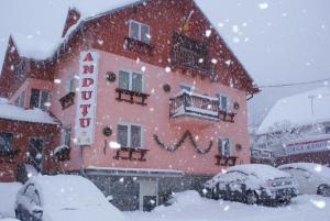 Casa Andutu - Busteni