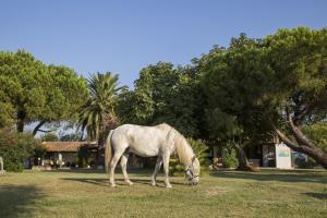 obrázek - Hotel Mas Des Barres