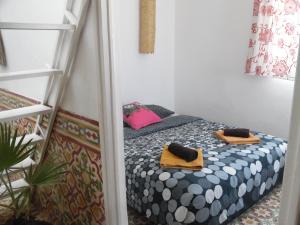 Appartement Terrasse Medina