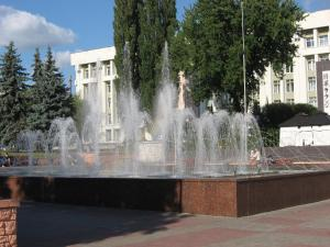 Апартаменты На проспекте Победы - фото 10