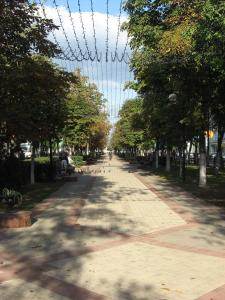 Апартаменты На проспекте Победы - фото 12