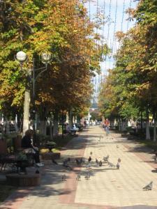 Апартаменты На проспекте Победы - фото 18