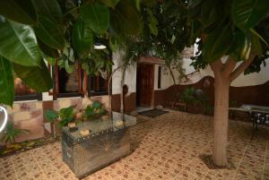 Maison d'hotes Rabha Ait Bou Izryane