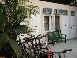 缅甸自行车世界住宿加早餐旅馆 (Bike World Myanmar Bed, Breakfast and Bike)
