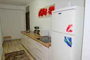 Studio Premium Mureșenilor, Appartamenti  Braşov - big - 8