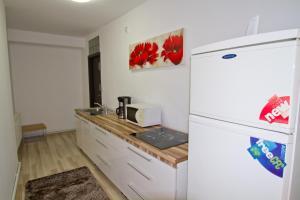Studio Premium Mureșenilor, Appartamenti  Braşov - big - 9