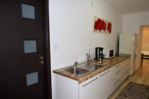 Studio Premium Mureșenilor, Apartmány  Brašov - big - 10