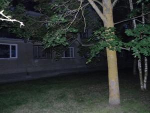 Kivioli Apartment Soo