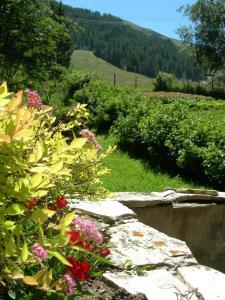 Lo Toumel, Ferienwohnungen  Val d'Isère - big - 13