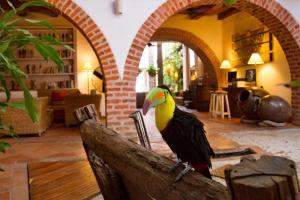Bantu Hotel By Faranda Boutique, Hotels  Cartagena de Indias - big - 64