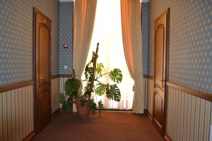 Отель Олимп клуб - фото 18