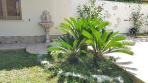 Villa Fontana, Виллы  Тропеа - big - 38