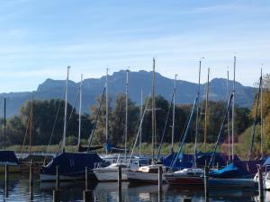 Zum Fischer am See, Pensionen  Prien am Chiemsee - big - 29