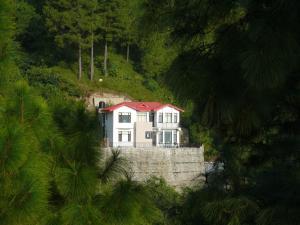 Alpha Gold Pine Cottage
