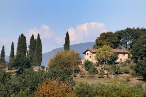 Casa Della Vigna