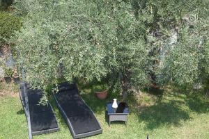 Befelice In Vigna Vista Mare, Nyaralók  Aci Castello - big - 17