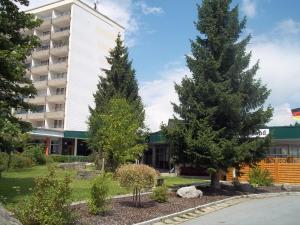 Apartment Angela (Haus Bergland)