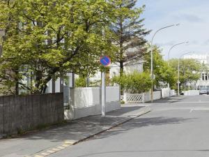 雷克雅未克市中心豪华公寓 (Luxury Apartment Central Reykjavík)