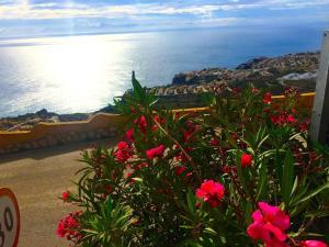 Panorama Luxury Suite, Ferienwohnungen  Cumbre del Sol - big - 22