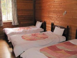 加拿大悟龍村酒店 image