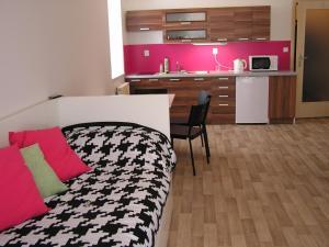 Apartment Trebon