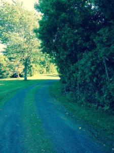 Cedar Drive B&B Gîte