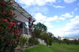 Miravalle Suites, Penziony – hostince  Paipa - big - 78