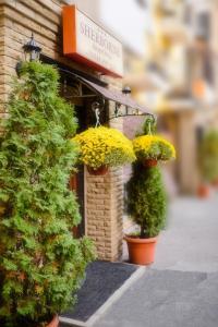 Апарт-отель Boutique Sherborne - фото 27