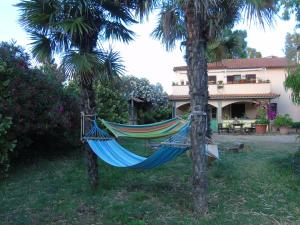 B&B L'Albero della Vita, Bed and breakfasts  Borgo Pantano - big - 30