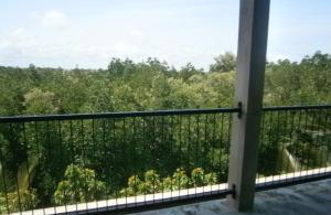 Mangrove Lagoon View, Apartmány  Negombo - big - 4
