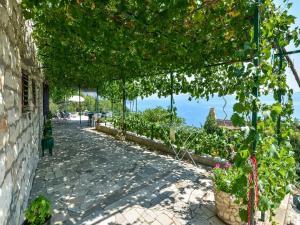 Dalmatian Stone House Anka