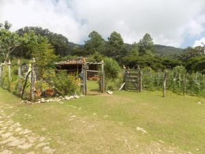 Rancho Hostal La Escondida Eco Park, Bed & Breakfast  Teopisca - big - 65