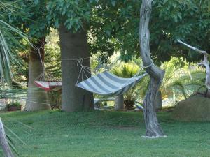 Domus Piras, Загородные дома  Кардеду - big - 47