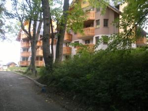 Apartament 1602 - Apartment - Karpacz - Kopa