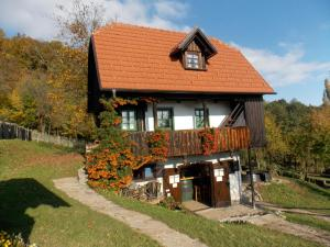 Country house Etno kuca pod Okicem