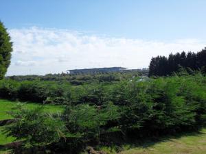 Old Farm, Case di campagna  Redhill - big - 25