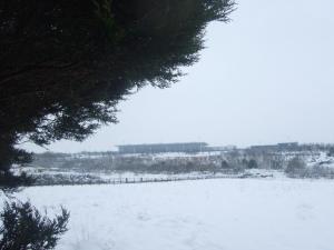 Old Farm, Case di campagna  Redhill - big - 30