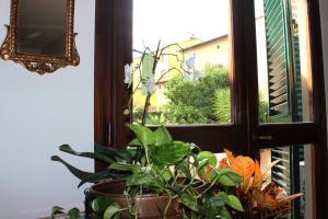 Casa per Ferie Regina Santo Rosario, Bed & Breakfast  Firenze - big - 35