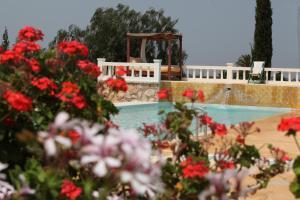 obrázek - Villa Juba