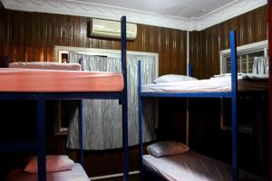 Bunk Bed in Mixed Dormitory Room - Guestroom Blue Lizard Backpacker
