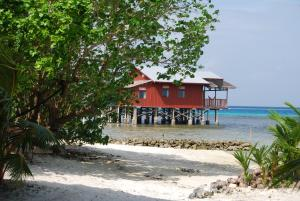 Imagination Island, Chaty v prírode  Gizo - big - 103