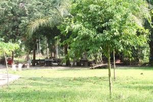 Baan Kroeng Krawia Homestay