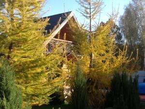 Загородный отель Домик в Деревне - фото 5