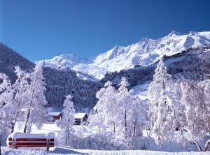 Chalet Marmottes, Chalets  Saas-Fee - big - 31