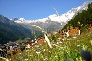 Chalet Marmottes, Chalets  Saas-Fee - big - 33