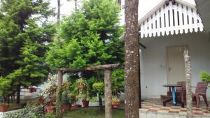 The Raintrees Resorts