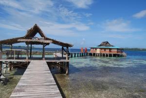 Imagination Island, Chaty v prírode  Gizo - big - 126