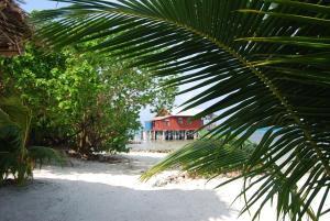 Imagination Island, Chaty v prírode  Gizo - big - 89