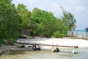 Imagination Island, Chaty v prírode  Gizo - big - 96