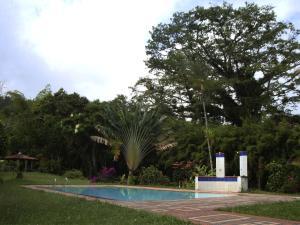Ceibas Hostel